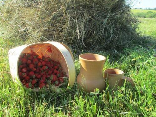 Каникулы в деревне в гостях у гончара